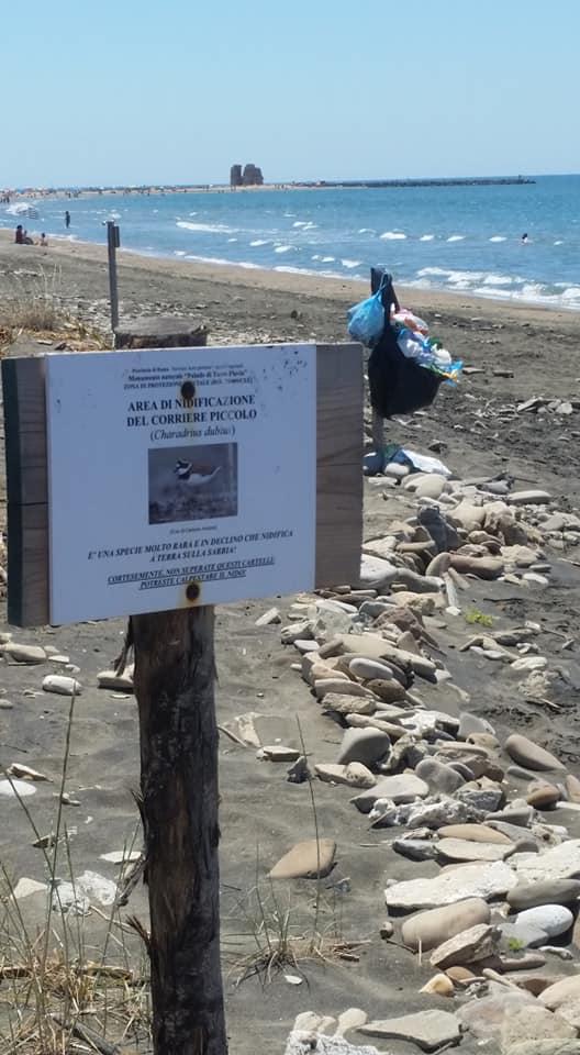 Spiagge ricolme di rifiuti