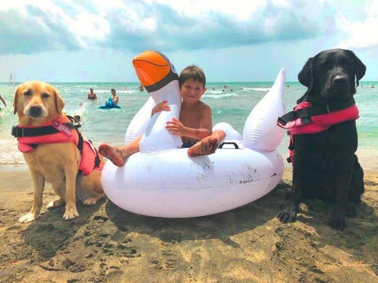 Tarquinia, bimbo in mare salvato dai cani del Sics