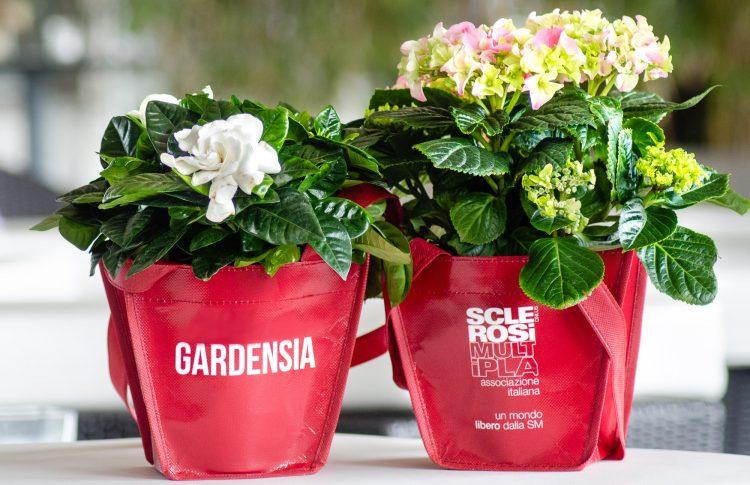 Nuovo appuntamento con ''Bentornata Gardenia''