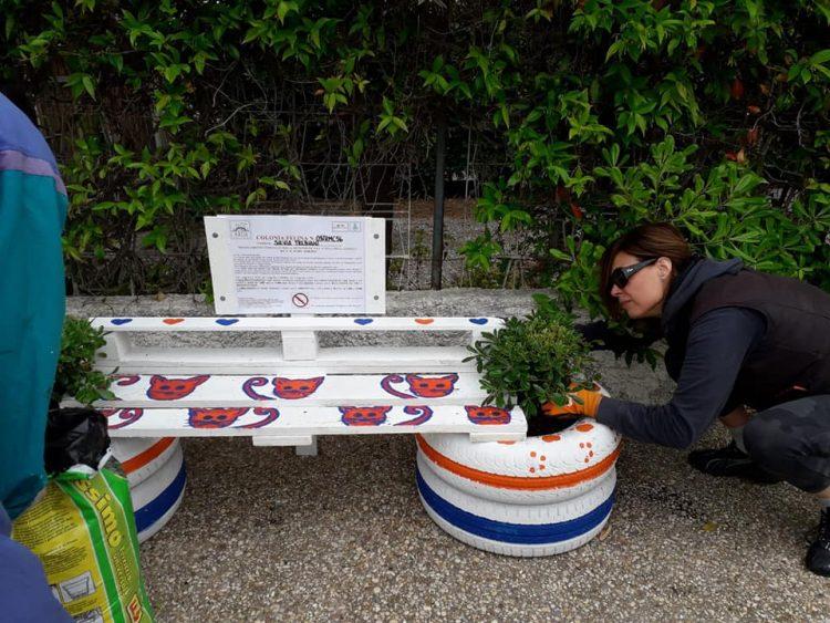 Arua presenta il progetto ''Riqualificare Santa Marinella riciclando. Conosciamo e adottiamo le nostre colonie feline''