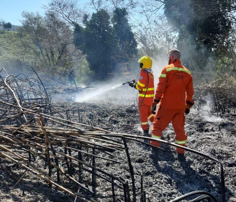 Incendio boschivo in zona Procoio di Ceri