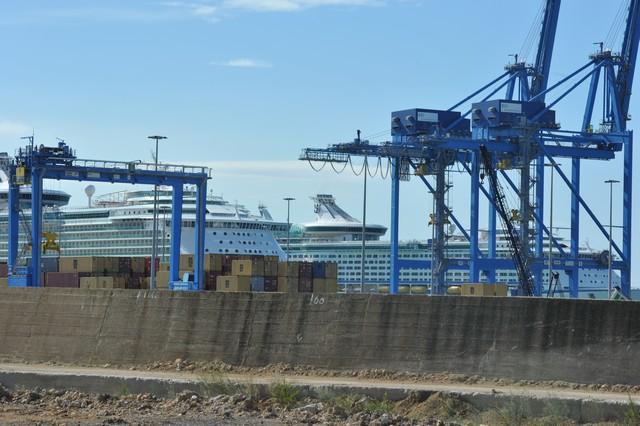 Luciani: ''Il porto sta morendo''