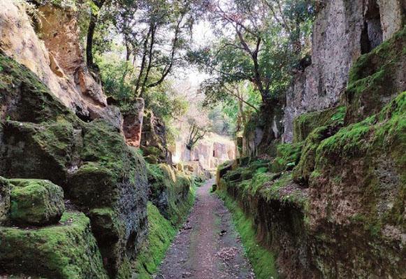 Passeggiata inaugurale lungo i ''Sentieri degli Etruschi''