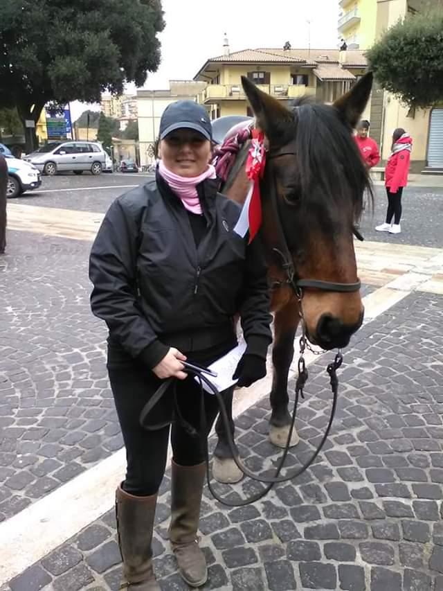 Cavallo tolfetano, al via la 40esima edizione di ''Travagliato cavalli''
