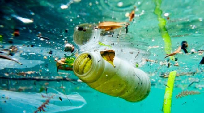 Anche la spiaggia di Montalto diventa plastic free