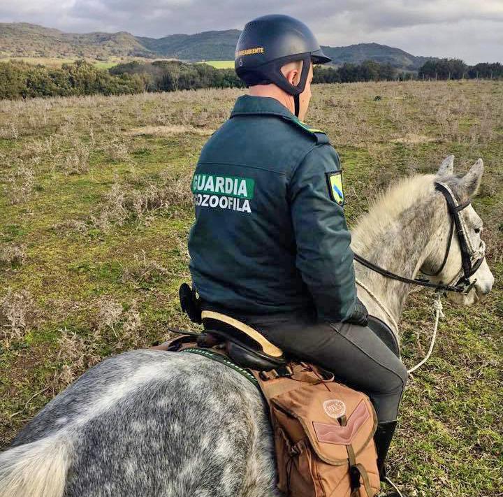 Guardie ecozoofile a cavallo per salvaguardare l'ambiente