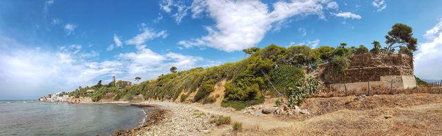 Santa Marinella natura selvaggia in pieno centro (foto Dario Urbani