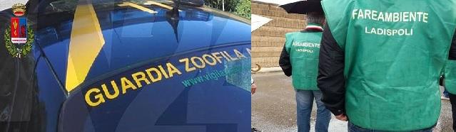 ''Guardie Zoofile, un baluardo a Ladispoli''