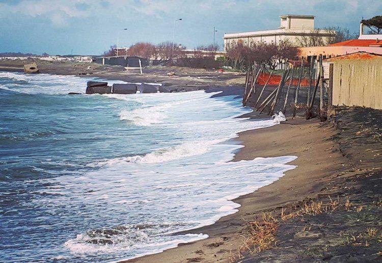 I giovani democratici di Tarquinia puliscono la spiaggia delle Saline