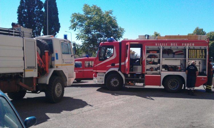 Incendio in un uliveto a Fiumicino: l'undicesimo dal 26 luglio