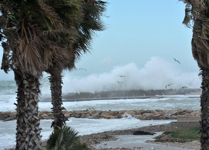Vento forte su tutto il litorale