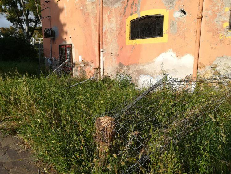 Parco Spigarelli, Pd: ''Una giungla''