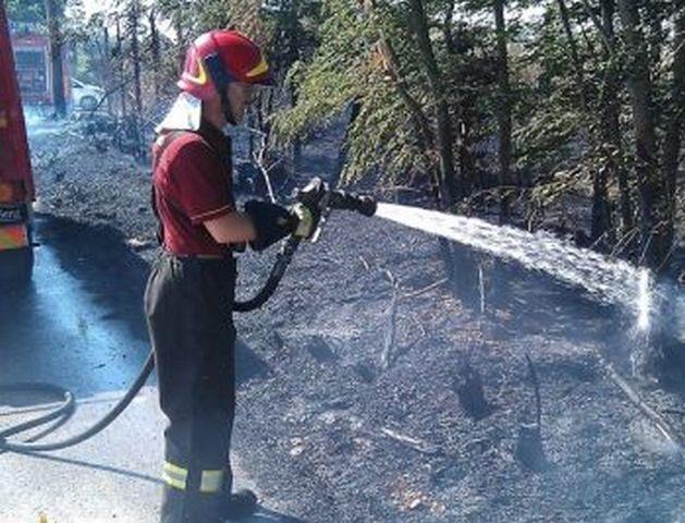 Il fuoco minaccia il Bosco di Palo