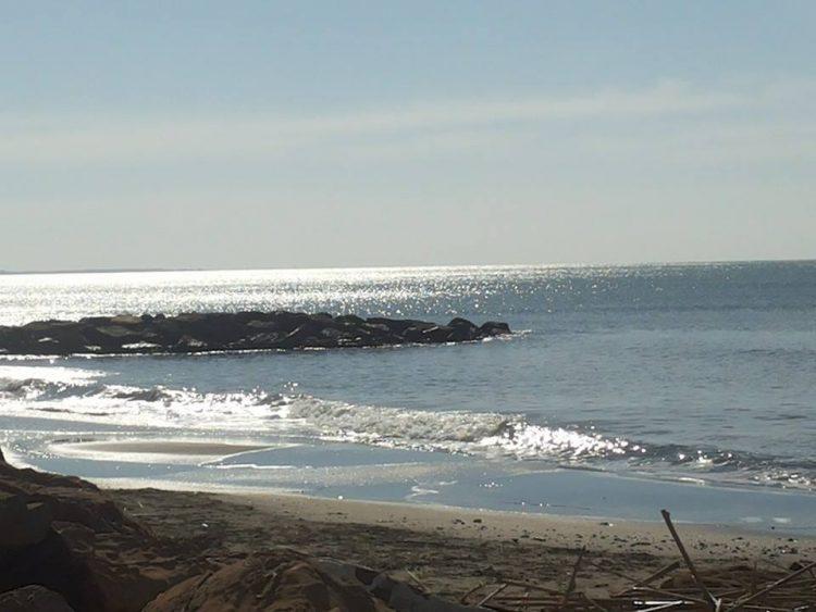 Qualità delle acque marine, bagni vietati nel tratto centrale