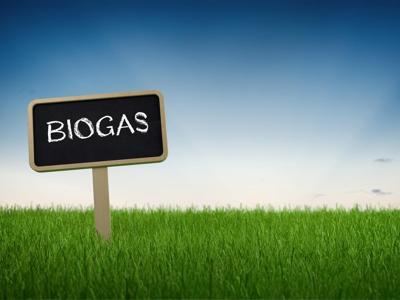 Biogas, modello da esportare