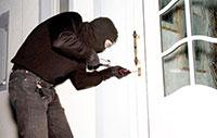 ''Una task force contro i ladri''