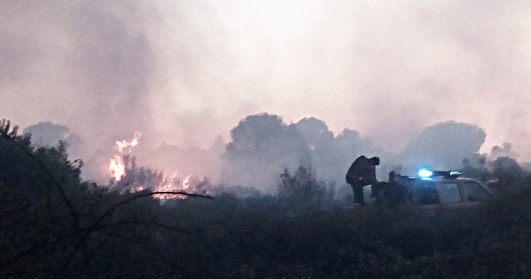 Notte di fuoco alla pineta di Focene
