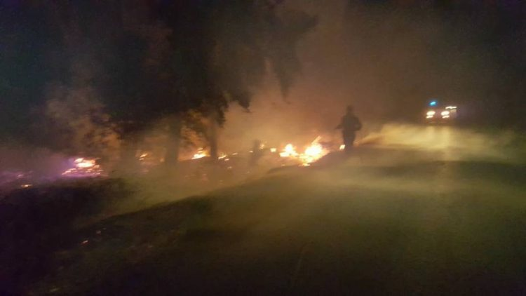 Vasto incendio sulla Litoranea: ore di lavoro nella notte per i volontari Aeopc