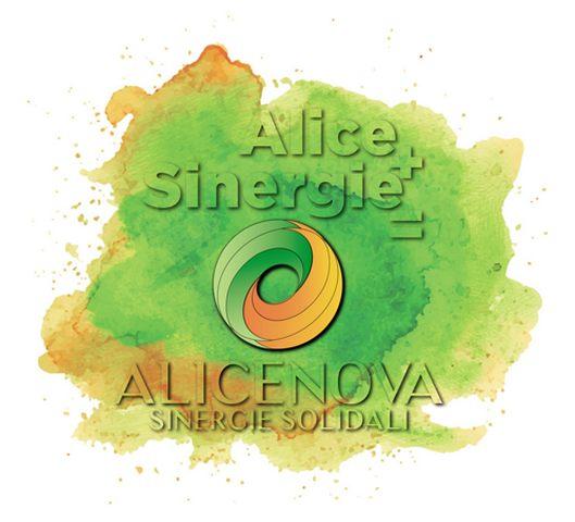 Alicenova, le cooperative Alice e Sinergie diventano una sola realtà