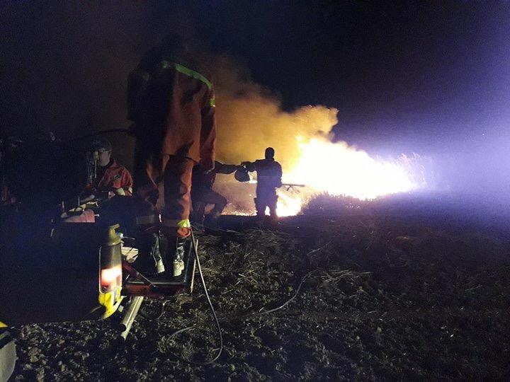 Tarquinia, vasto incendio nella notte a Montericcio
