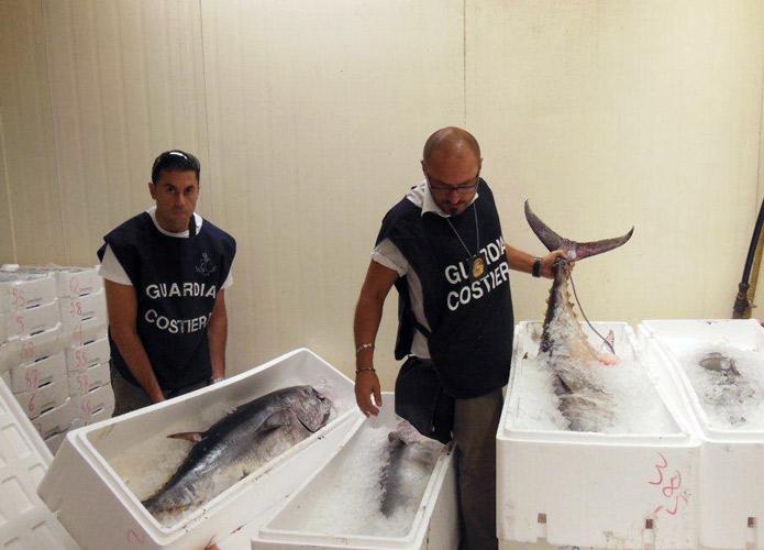 Operazione Labyrinth: sequestrate oltre 2 tonnellate e mezzo di prodotti ittici