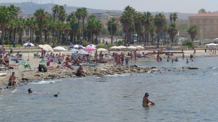 Alghe potenzialmente tossiche sul litorale