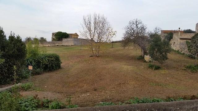 Campo Cialdi principale novità del percorso del Presepe Vivente di Tarquinia