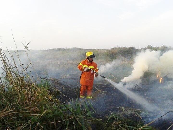 Incendio a Pescia: intervento della Prociv