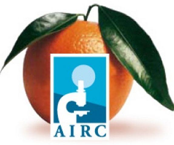 Arance della salute: anche quest'anno  il liceo Galilei aderisce all'iniativa Airc