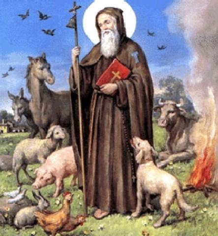 Proseguono in collina i festeggiamenti in onore  del patrono degli animali  Sant'Antonio abate