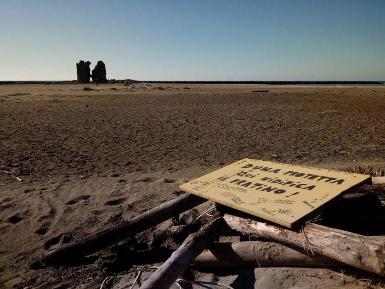 Torre Flavia, via le protezioni dalle dune