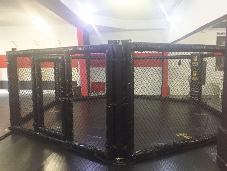 Nasce la Martial Academy