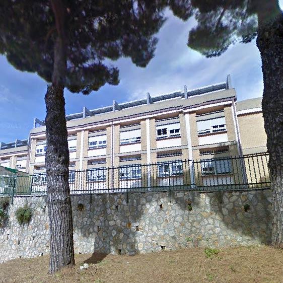 Derattizzazione, scuola chiusa oggi a Tolfa