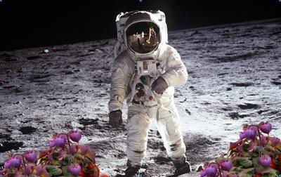 Orto spaziale, pomodori e verdure fresche per gli astronauti