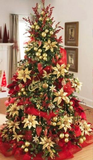 Al via la raccolta degli alberi di Natale: verranno ripiantati in aree adeguate