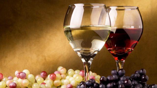 Slow food, alla scoperta dei segreti del vino