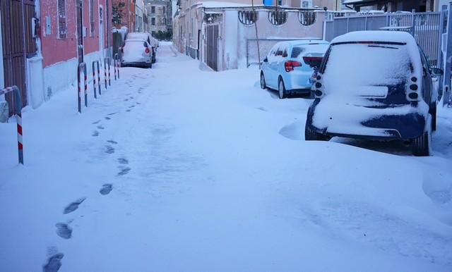 Cerveteri: Comune, Prociv, Guardie Eco Zoofile e Polizia Stradale al lavoro per l'emergenza neve