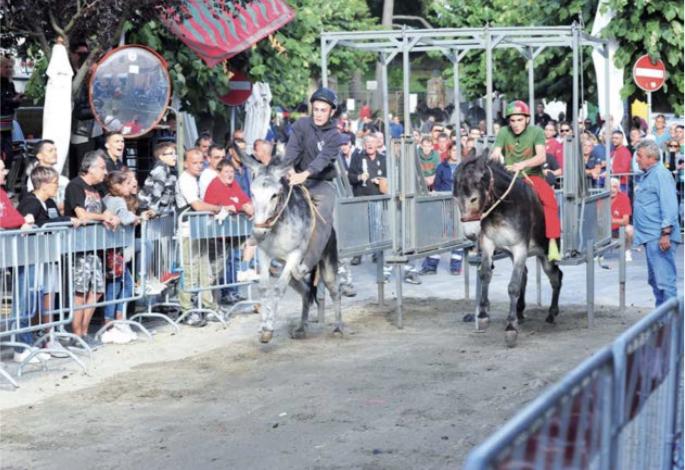 Corsa dei somari: vittoria di Paolo Fabi con Bruno II