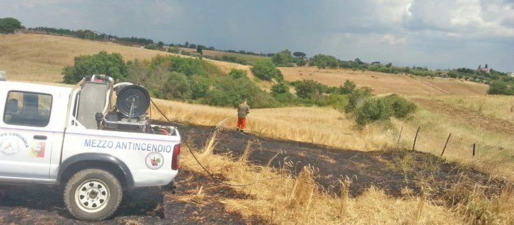 Un campo di grano salvato dal fuoco