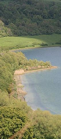 Martignano, il Comune annuncia sanzioni per le soste selvagge