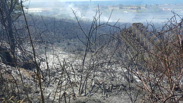 Incendio alla Perazzeta: denunciato l'autore