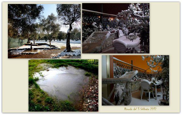 Ricordo nevicata 2012 (foto Pina Irato)