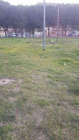 Campo dell'Oro, perdita alla rotonda