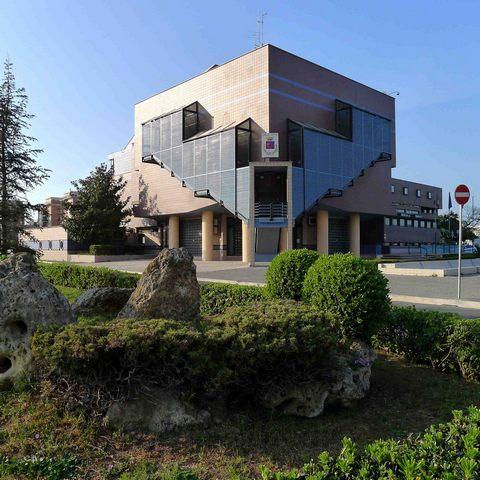 """Affidamenti diretti, Ladispoli città: """"Spreco di denaro pubblico"""""""