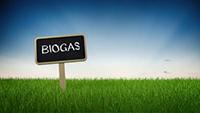 Consumo di gas, il biometano potrebbe coprirne il 12%