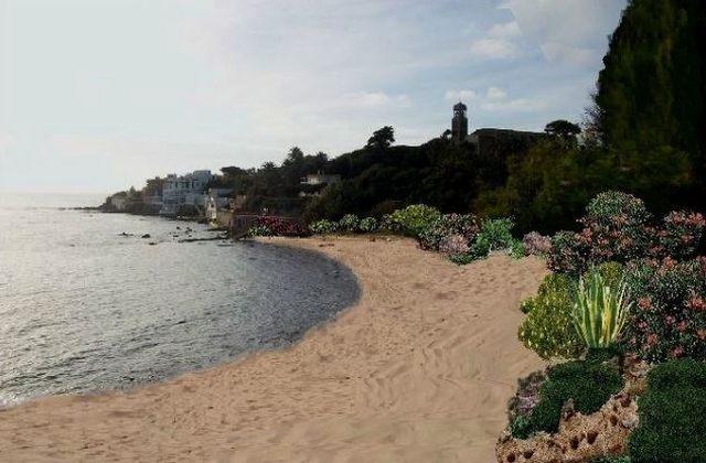 Floris: ''Bisognapreservare la spiaggia e la sua flora''