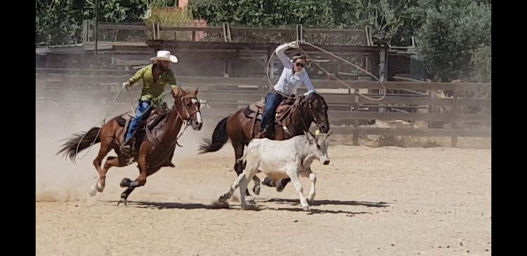 Spettacolo al Winnie Dry Ranch