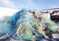 Blitz contro i pescatori abusivi