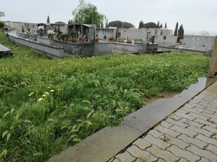 Cimitero, tra degrado ed incertezze