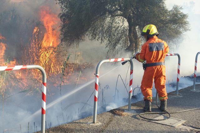 Aggiornato il catasto incendi fino al 2016